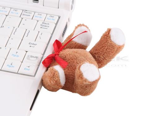 USB Bear